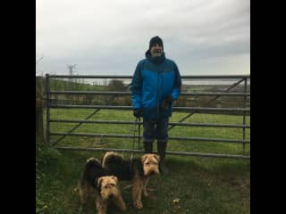 Woodie with Emrys and Carwyn in, Devon, England.  October 2019
