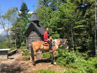 Daily horse riding while House & Horse Sitting in the Bavarian Forest 2 times!