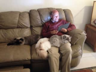 Rich with three adorable cats..