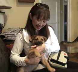 My friend's foster puppy Bosco