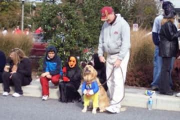 Buddy at Halloween!