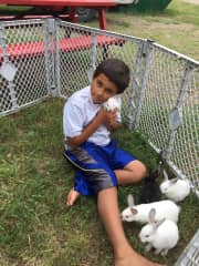 Foster youth playing with bunnies
