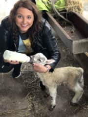 This is Lucy the lamb, I have a cousin who married a farmer so I get lots of time on the farm with the cows, calf's, sheep and lambs. This wee one was only a day old here and was rejected by her mother so required some extra TLC.