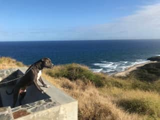 Coby visiting Point Udally, the U.S. most eastern point