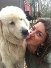 Camilla and our Beautiful Mareema, Italian Sheepdog