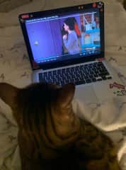 likes friends episodes