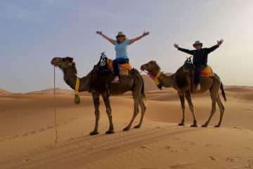 Camel riding in the Sahara desert in Morocco.