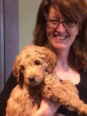 Riley puppy