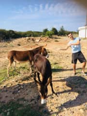 Exploring Rural Cyprus finding new furry friends along the way!