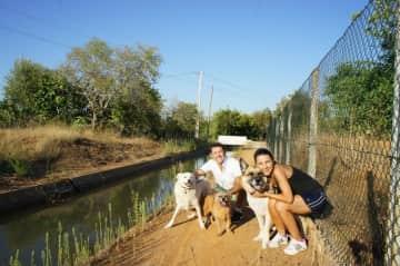 Algarve with Max, Bailey & Rosie