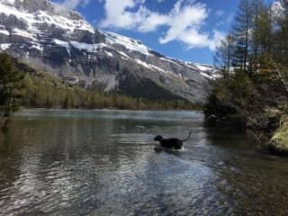 Having a swim in the lake