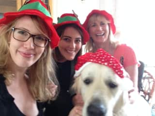 Christmas with Churchill in Cape Town