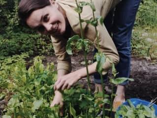 A bit gardening? Easy peasy