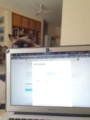 She always keeps me company while I work.