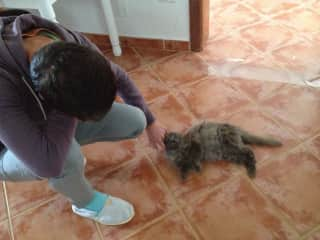 Michal playing and pampering Gobi, the beautiful stray mother cat who came to our home in El Hierro island in Canary Islands and gave birth to two beautiful kitties!