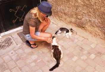Linda with feral cats in Marrakesh, Morocco