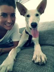 """my foster dog (""""Chicho"""") from spain (Summer 2018 - Summer 2019)"""