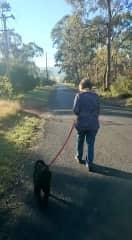 Julie walking our Armidale house-it dog, Coco
