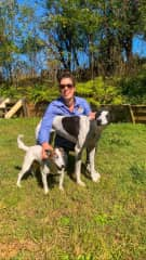 With our 2 dogs Oscar (Fox terrier mix) and Angela (greyhound)