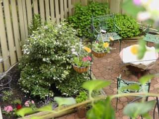 Fairfax garden left