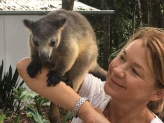 Andrea with Nelson, the tree kangaroo
