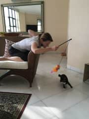 Zoom! Playtime with adorable Sunny!