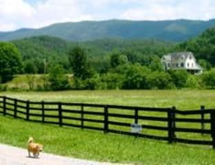 Our farm and Patchie Pee the Wonder Dog! Catawba, VA. USA