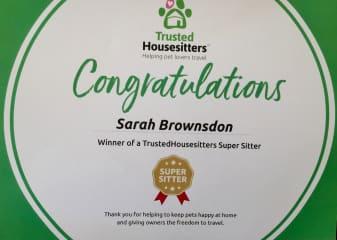 Trustedhousesitters award 2017 :)