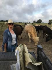 Me helping feed cattle on the ranch in Ledbetter TX
