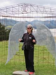 A Sculpture Display at a NZ Farm