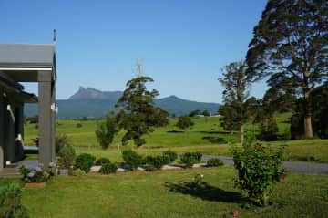Mt Warning from the front yard