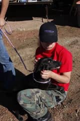 I was working with Emergency Animal Rescue Services on a neglect case in Montana.
