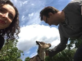 Monika, Greg and the sweetest goat