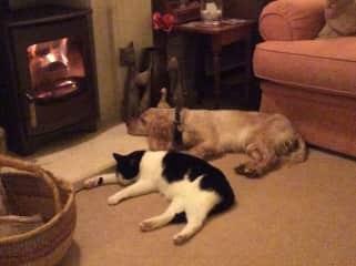 Monty & Widge winter warming
