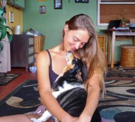 Pet sitting Bella in Hawaii