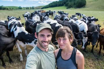 Us with our young cows in New Zealand