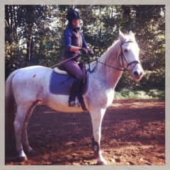 My big love - my horse Mohawe - she is now retired