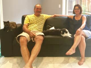 Feline friends Stella and Stiggy at their home in Australia.