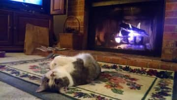 Warming her feet by our fireplace