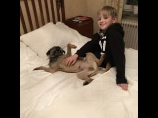 Noah och Olle having a good time in my bed.
