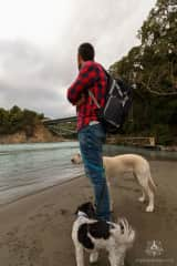Sergio with our dogs doing Housesitting in Methven, NZ