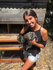 Taking care of chickens like Gretchen in Oakland!