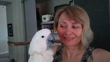 Kathe and Mulluccan Cockatoo, Mr. Grant