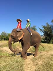 That is me in the red.  Riding an elephant in an Elephant Rescue Sanctuary in Thailand.  After the ride we bathed and fed these beautiful animals.