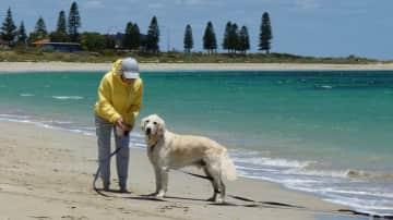 Chedda at the beach, AUS