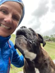 Ronnie the big Boxer dog kissing me during walking outside