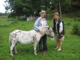 Pony Viktor, my mother and me
