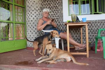 In Uganda the dogs Peace and Freedom moved in with me as well as Snowball the cat