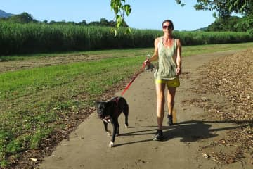 Walking/running Charlie - usually a run which can get pretty sweaty in Cairns.