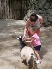 My daughter and granddaughter at the petting zoo